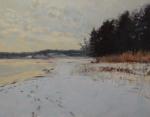 Quabbin Shore / Snow