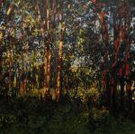Trees at Environmental Park