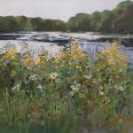 Pond /Summer Weeds