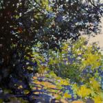 Road Along the Quabbin